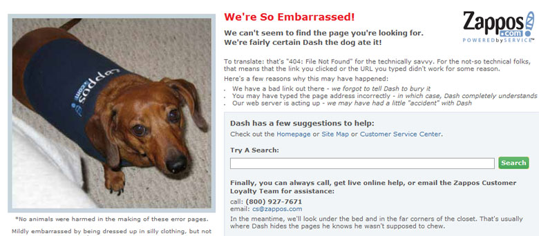 Zappos Uses Dash the dog on Their 404 Error Page to Make it Memorable